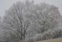 Winterbilder_11