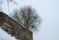 Winterbilder_14