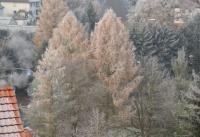 Winterbilder_24