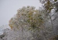 Winterbilder_26