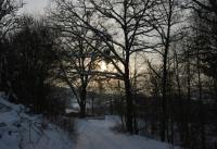 Winterbilder_7