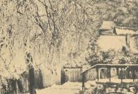 Historische Bilder_12